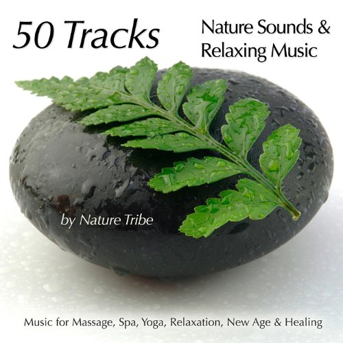 Magic in the Woods (Tibetan Flutes, Birds & Keyboards For Relaxation)