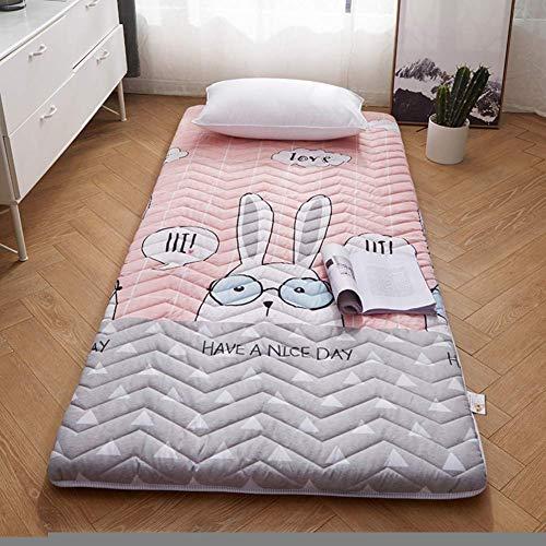 YDYL-LI Sleeping Tatami Floor Mat Foldable Futon Tatami Mattress Soft Thick Sleeping Mat Roll-up Japanese Student Dormitory Mattresses Pad Single Double Bed Pad E 80x190cm(31x75inch)