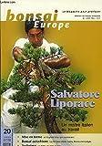 Bonsai Europe N°20 : Salvatore Liporace, un maitre italien au travail. Un if, géant plus que centenaire. Le Roi des arbres nains, Buxus microphylla. Un hêtre en style radeau.