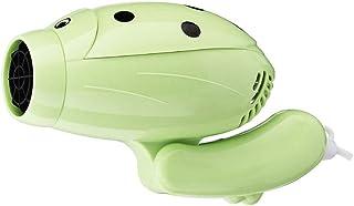 RKY Secador de Cabello para niños - para Viajes, 750 vatios, portátiles con asa Plegable, secador de energía para el hogar, para Viajes /-/ (Color : Green)