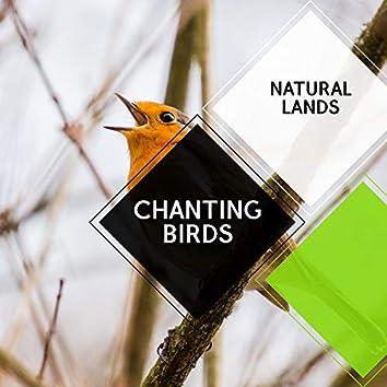 Chanting Birds - Natural Lands