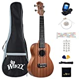 Winzz Concierto Ukelele de Caoba 23 Pulgadas con Cuerdas Aquila de Nylon Kit de...