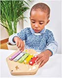 Immagine 1 le toy van piastrella educativa