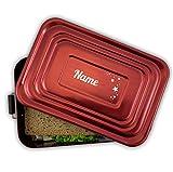 Werbetreff Gera Brotdose mit Name und Motiv, Aluminium Lunchbox rot mit Gravur Geschenk-Idee für Kinder, Schule, Kindergarten, Metall, Vesperdose Erwachsene