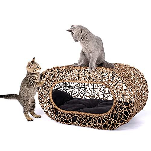 D+ Garden Fun Stackable Wicker Cat Bed Review
