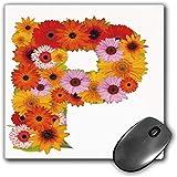 Mouse Pad Gaming Funcional Letra p Alfombrilla de ratón Gruesa Impermeable para Escritorio Arreglo...