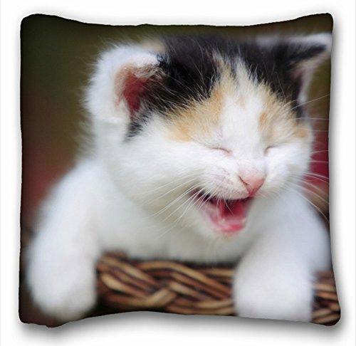 décoratifs carré Couvre-lit Taie d'oreiller animaux Chaton bébé Slip de papier Igrunov Hunter 45,7 x 45,7 cm deux côté, polyester & polyester mélangé, Motif 9, European