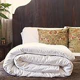 Silk Bedding Direct Piumone Riempito di Seta di Gelso. Letto Queen-Size. Utilizzo Primavera/Autunno. 225cm X 220cm. Prezzo Basso di Vendita