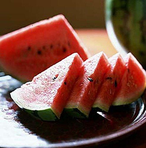 Livraison gratuite 11 des espèces rares Graines de pastèque chinoise à choisir des fruits délicieux melon d'eau graines bonsaïs - 50 Pièces 2