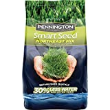 Pennington Smart Seed Northeast Mix Grass Seed, 20 lb