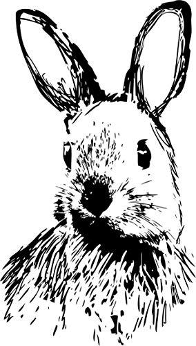 NEWSTAMPS DIE STEMPELMACHER Karl der Hase Motivstempel aus Holz - 40 x 65 mm - Scrapbook Stempel zum basteln von Karten