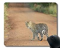 YENDOSTEENマウスパッド滑り止め、タイガー肉食動物のストライプ猫猫のひげパーソナライズされた長方形のゲーミングマウスパッド