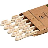 VIVAGO Biodegradable Bamboo Toothbrushes 10 Pack - BPA Free Soft Bristles Toothbrushes, Eco-Friendly, Organic, Compostable Natural Wooden Toothbrush