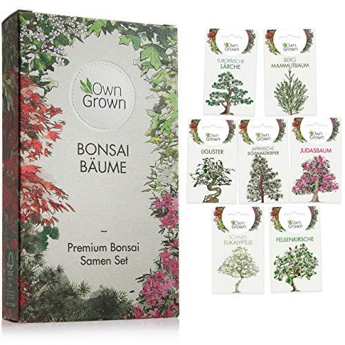 Bonsai Samen Set: Premium Bonsai Starter Kit mit 7 Sorten Bonsai Saatgut – Bonsai Anzuchtset zum Bonsai Züchten für den Mini Garten und Zen Garten, Bonsai Baum Samen Set mit Bonsai Seeds von OwnGrown