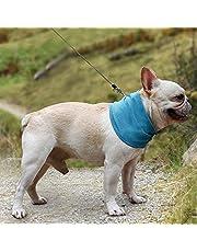 1758studio Bandana de enfriamiento para perros collares frescos para cuellos de enfriamiento Bandana bufanda de hielo para mascotas con agujero de correa (L)