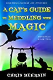 A Cat's Guide to Meddling with Magic: A Humorous Fantasy Adventure (Dragoncat Book 2) (Kindle Edition)