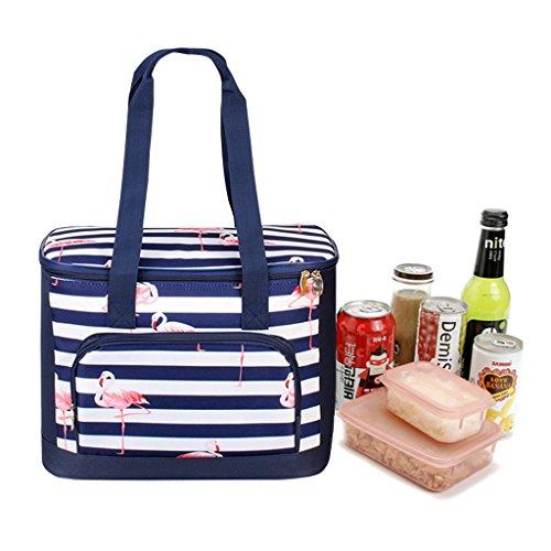 WHT Isoliert Lunch-Tasche, Flamingos Picknick Tasche Kinder Kühltasche Mittagessen Tote mit Griff für Frauen Männer Jungen Mädchen zu Gehen Travel School Picknick, Große 21 Liter