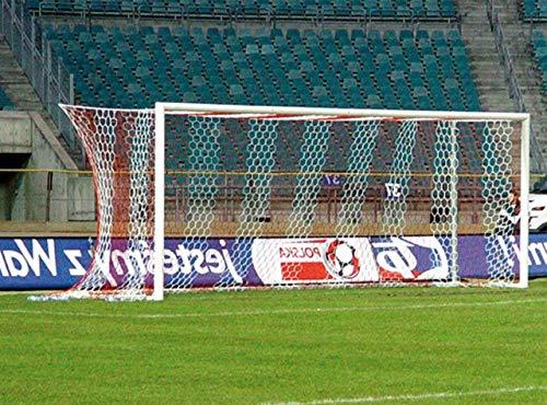 Haspo Fußballtor - Bundesliga - 7,32 x 2,44 m - freie Netzaufhängung, Farbe:weiß