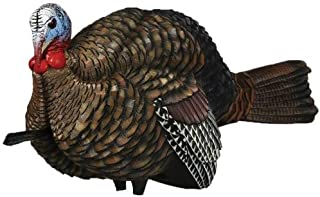 Avian-X LCD 1/2 Strut Jake Turkey Decoy