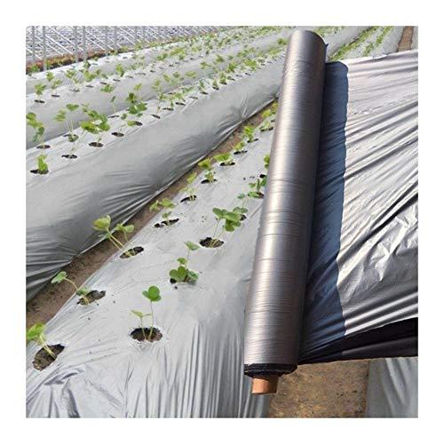 GAI 50m Plata-Negro De Plantación Mantillo Película De Plástico, 0.012 Mm Espesor Jardín Invernadero Reflectante Weed Control Orchard Fruit Tree Mantillo De Cine