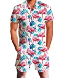 Idgreatim Men 3D Graphic Flamingos Beach Rompers Music Festival Casual Shorts Zipper Jumpsuit One Piece Romper Overall Outfits