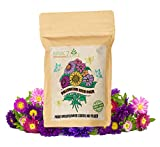 NatureZ Edge Wildflower Seeds, 35 Varieties of Flower Seeds, Mix of Annual and Perennial Seeds for Planting, Attract Butterflies and Hummingbirds, Non-GMO