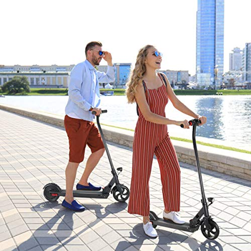 Windgoo Electric Scooter, Portable Folding E-scooter for Adults Men, Max speed 20 km/h, 250W motor 36V 5.2Ah Battery, Double Brake, Aluminum Scooter