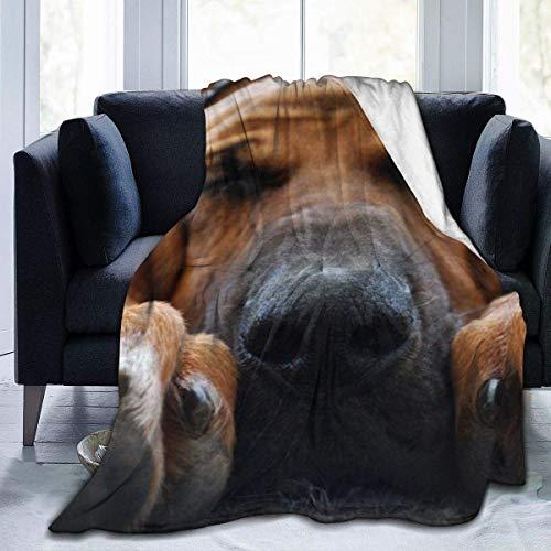 Manta suave y acogedora con diseño de perro de sangre, manta de franela sherpa, manta de camping, manta de tamaño Queen para salón, sofá, lectura y televisión de 60 x 50 pulgadas