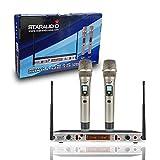 STARAUDIO Dual Wireless Microphone System UHF 2 Channel IR with 2CH Handheld Mics for Pro Stage PA DJ KTV,Church Stage, Karaoke Club Mic System SMU0215A