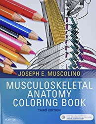 Musculoskeletal Anatomy Coloring Book 3rd Edition
