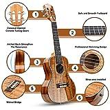 Immagine 2 ukulele hricane concerto 23 pollici