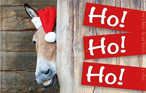 3 stuks kleine kerstkaarten, vouwkaarten met envelop, cadeauhanger 55 x 85 mm paard, ezel met kerstmuts