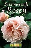 Faszinierende Rosen