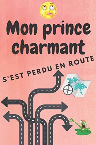 Mon prince charmant s'est perdu en route (Carnet de notes pour fille déséspérée): Un carnet d'écriture à s'offrir ou à offrir à une fille célibtaire !