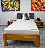 Dinaflex Matelas 70X190 MÉMOIRE DE Forme Marthe Aloe ÉPAISSEUR 17 CM,Housse Aloe Vera.FABRIQUÉ en Allemagne