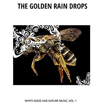 The Golden Rain Drops - White Noise and Nature Music, Vol. 1