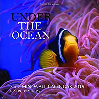 Under the Ocean 7 x 7 Mini Wall Calendar 2019: 16 Month Calendar