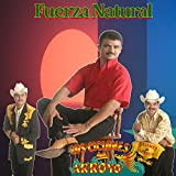 Fuerza Natural (Cover)