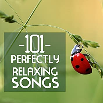 101 Perfectly Relaxing Songs - Meditation Spa Music for Adult and Baby Sleep