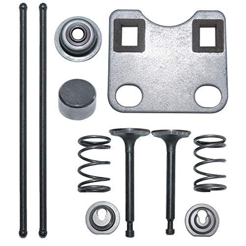 AUMEL Juego de Tapas de protección de vástago de Placa de válvula para Motor de cortacésped Honda GX160 GX200 5.5HP 6.5HP Reemplace 14791-ZE1-010.