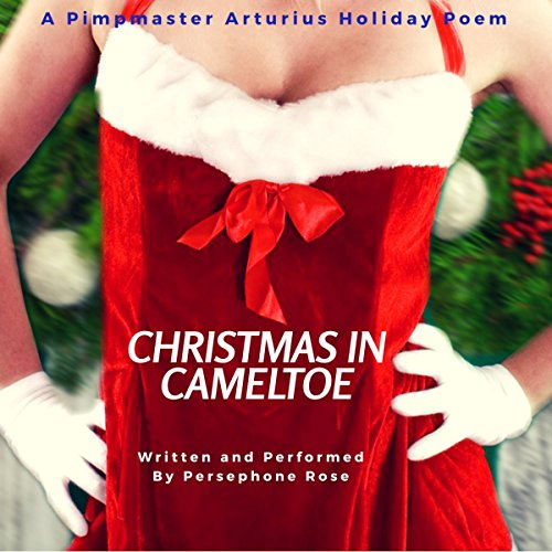 Christmas in Cameltoe: A Pimpmaster Arturius Holiday Poem audiobook cover art