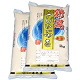 【精米】新米 令和2年 新潟県産(新潟辰巳屋産地直送米)白米 こしいぶき10kg(5kg×2袋)