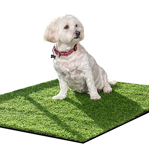 Artificial Grass for Pets Size Small/med is Soft& pet friendly-39x31.5in Realistic Grass Easy to Clean with Drainage Holes is Great Turf Rug for Dog Potty Training Faux Pee pad for Indoor & Outdoor