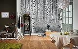 Komar - Vlies Fototapete WOODS - 368 x 248 cm - Tapete, Wand, Dekoration, Wandbelag, Wandbild, Wanddeko, Wald, Baum, Bäume, Landschaft - XXL4-023