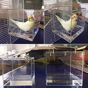 Baignoire à oiseaux avec crochet de suspension en métal pour la plupart des cages à oiseaux, perruches, calopsittes - Transparent