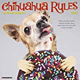 Willow Creek Press: Chihuahua Rules 2020 Wall Calendar (Dog