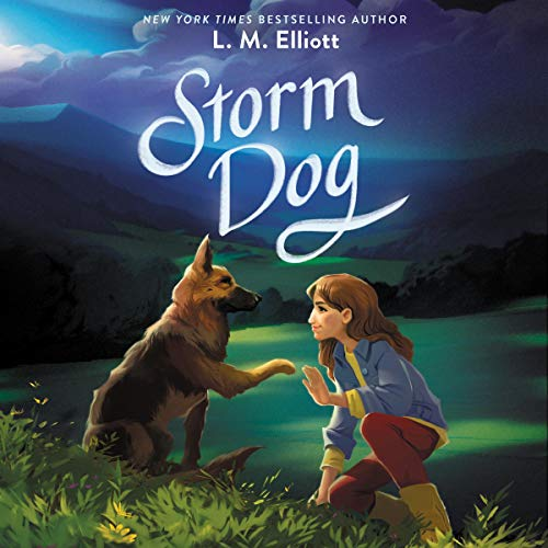 Storm Dog  By  cover art