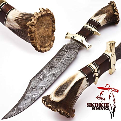"""SkokieKnives Damascus Steel Hunting Knife Stag Antler Handle with Burl Wood & Brass Guard –15"""" Handmade Premium Quality Sharp Edge Fix Blade - Genuine Multipurpose Knife – Ideal for Hunting, Camping"""