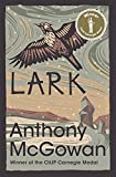 Lark (The Truth of Things)