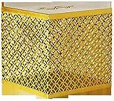 Hucha Hucha Hucha de hierro forjado Hucha moderna geometría simple solo no puede depositar hucha decoración de escritorio oro 5.9 × 5.9 × 5.9 pulgadas caja fuerte caja de ahorros de dinero para niños